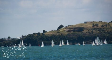 Regatta Race