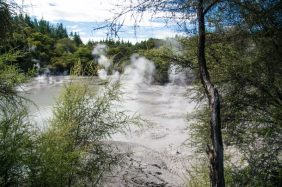 Wai-O-Tapu Mud Pools