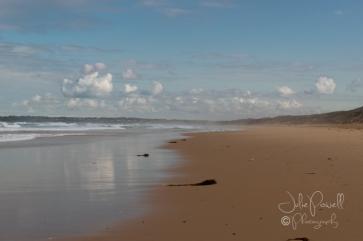 Cape Woolamai-0437