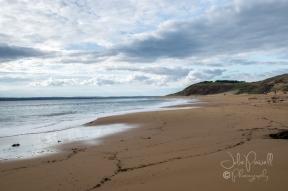 Flynn's Beach-0633