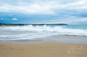 Flynn's Beach-0655