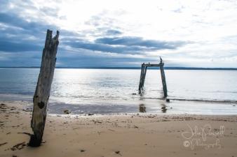 Flynn's Beach-0682