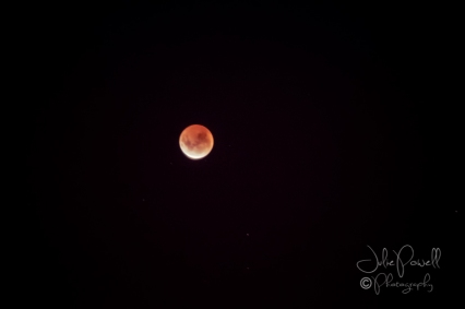 Lunar Eclipse-10