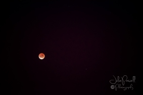 Lunar Eclipse-14