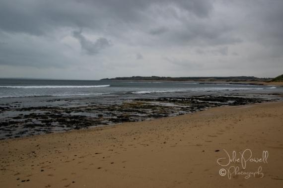 Woolamai Surf Beach-0327
