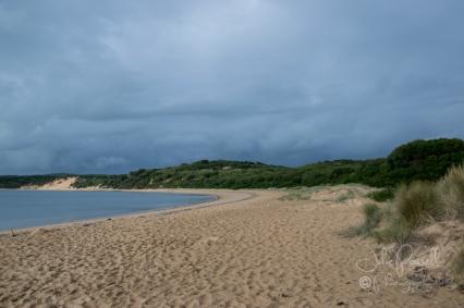 Woolamai Surf Beach-0368