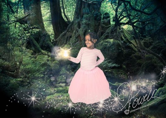 Fairy Forest-