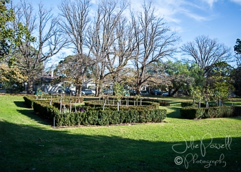 Kaesburgh Gardens-6-6