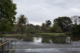 Botanic Gardens-1776