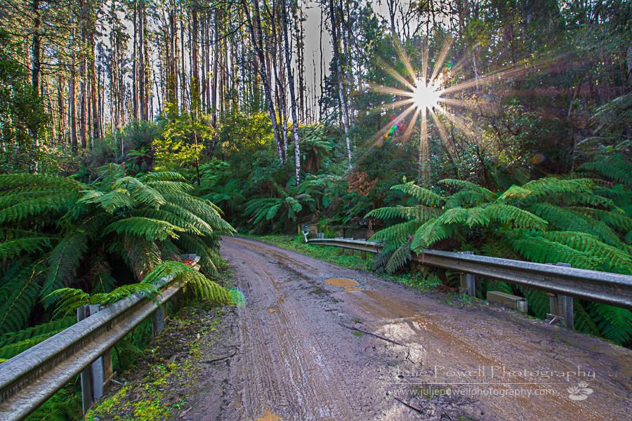 Sigma 10-20mm f/3.5 Wide Angle Lens – Review – Julie Powell ...