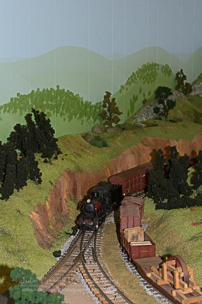 Model Trains-1058