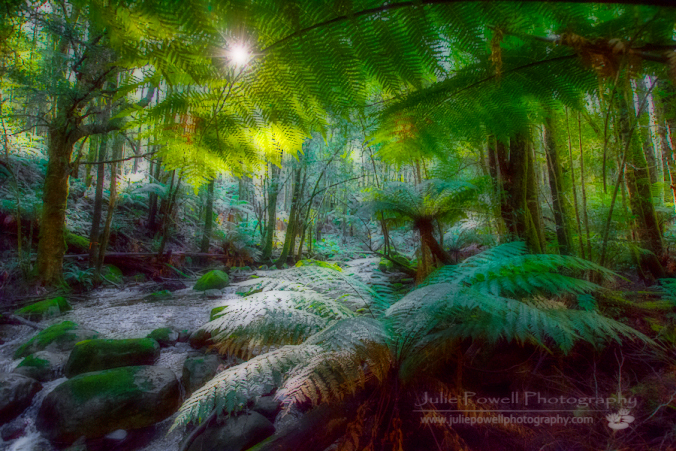 How to Create the Orton Effect (5/6)