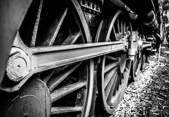 Train-