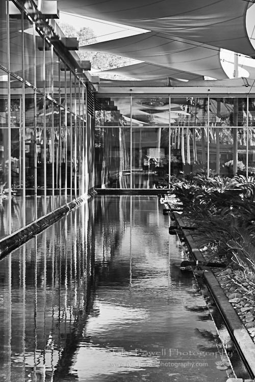 Shadows & Reflections--3