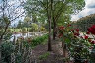 Alowyn Gardens
