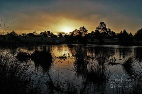 Autumn Sunset--7
