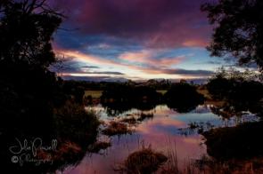 dawn-over-prospect-hill-reserve-17