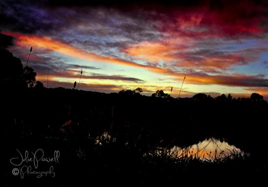 dawn-over-prospect-hill-reserve-19