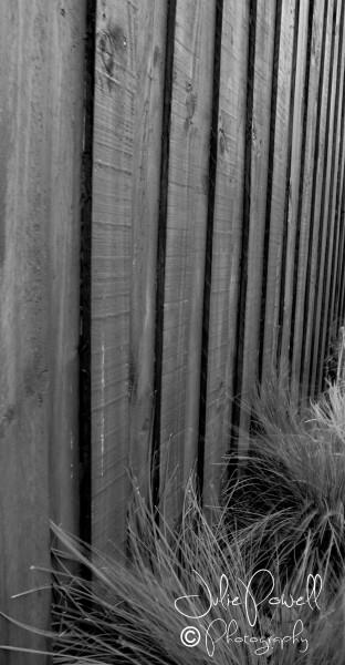 monochrome-fence-2-of-3-e1429585499188