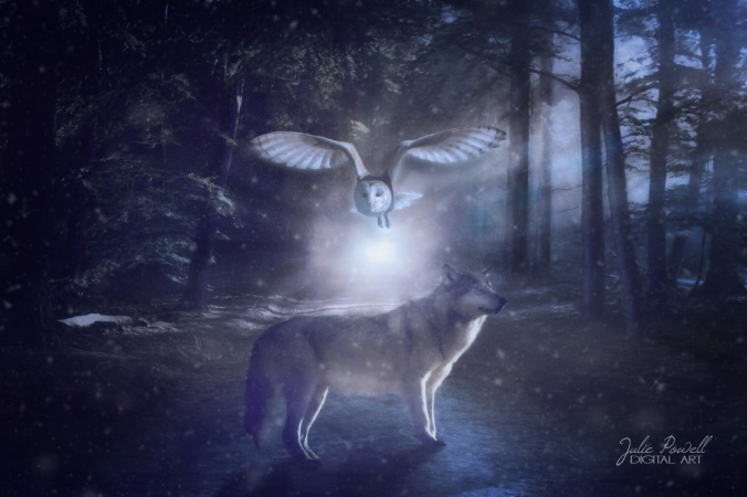 juliepowell_nightwatchers