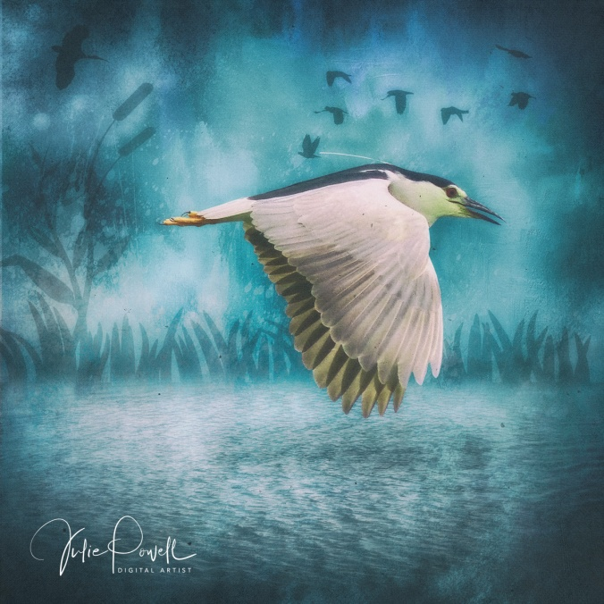 joyful-flight