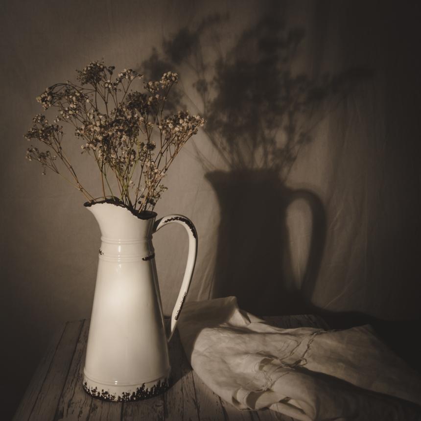 Image result for studio light still life