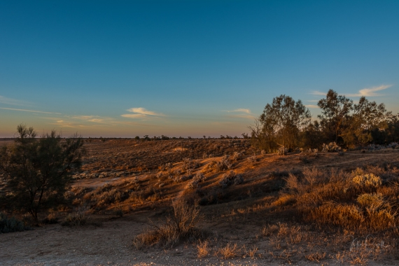 Mungo Plains