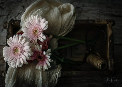 JuliePowell_Floral Fantasy-7