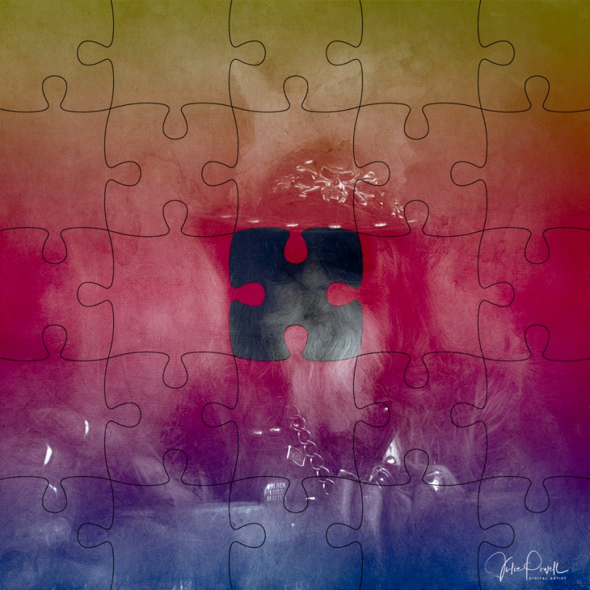 JuliePowell_Puzzled by Diversity