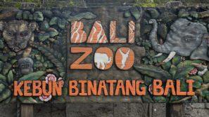 JuliePowell_Bali Zoo-3