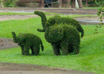JuliePowell_Elephant Sanctuary-1-4