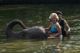 JuliePowell_Elephant Sanctuary-12-2