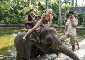 JuliePowell_Elephant Sanctuary-22