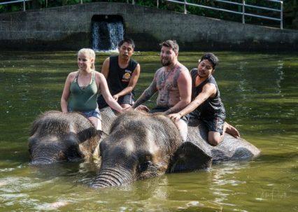 JuliePowell_Elephant Sanctuary-26