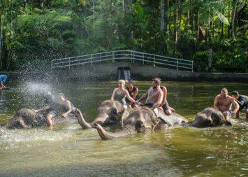 JuliePowell_Elephant Sanctuary-28
