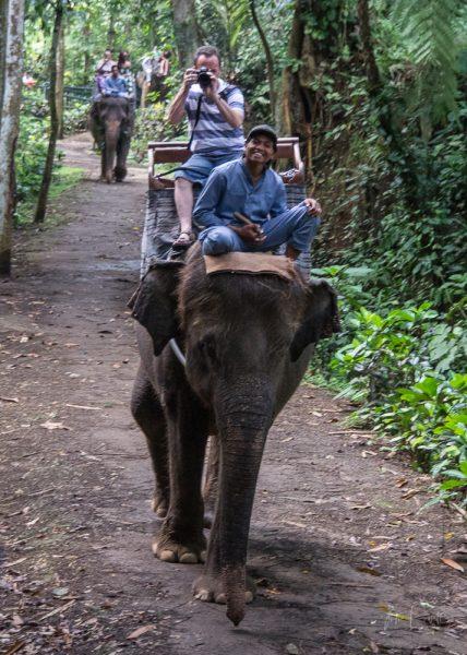 JuliePowell_Elephant Sanctuary-4-3