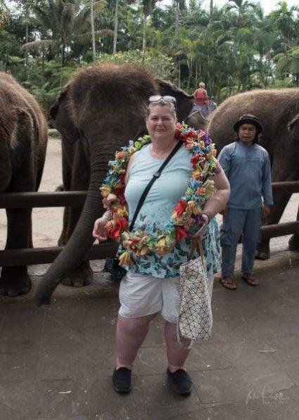 JuliePowell_Julie Elephants-4