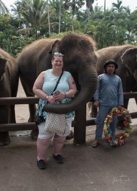 JuliePowell_Julie Elephants-5