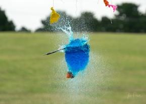 JuliePowell_BalloonBursting-16