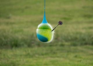 Warer Balloons