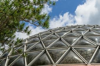 JuliePowell_Botanic Gardens-16