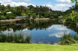 JuliePowell_Botanic Gardens-43