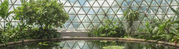 JuliePowell_Botanic Gardens-62