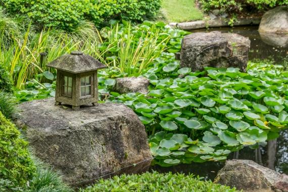 JuliePowell_Botanic Gardens-66