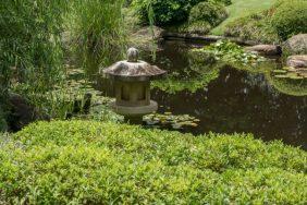 JuliePowell_Botanic Gardens-71