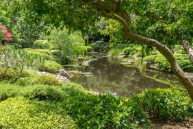 JuliePowell_Botanic Gardens-73