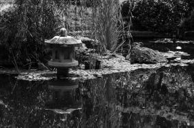 JuliePowell_Botanic Gardens-74