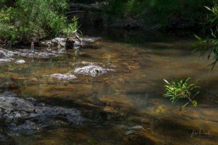 JuliePowell_Minyon Falls-17