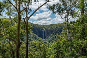 JuliePowell_Minyon Falls-33