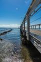 JuliePowell_Wellington Point-12